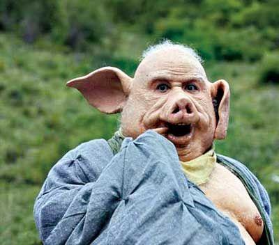 Mơ thấy con lợn