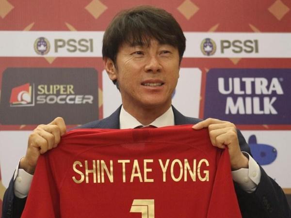 HLV Park Hang Seo khẳng định không nhượng bộ HLV Shin Tae Yong