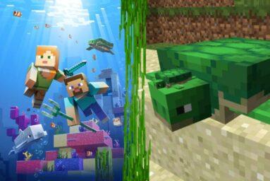 Minecraft: Cách nuôi Rùa ăn gì, tìm ở đâu?
